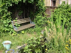 bench by the pond in Andy Roberts back garden