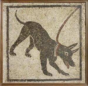 Pompeii Guard Dog Mosaic